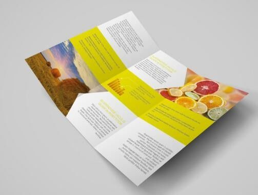 Colourful Custom Folded Leaflets Coated Paper With Slicer Flyer Printing